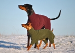 Equafleece Fleece Dog Suit