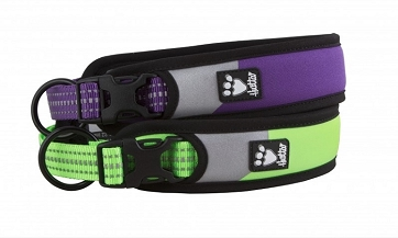 Hurtta Dazzle Collar - Lupine and Kiwi
