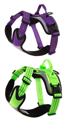 Hurtta Dazzle Harness - Lupine and Kiwi