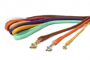 Rolled Leather Dog Leash , Soft