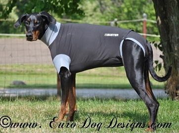 Buster Body Suit for Dogs - XXS 13