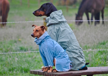 Hurtta Rain Blocker Dog Jacket