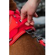 Handle on the back of the Hurtta Weekend Warrior Harness