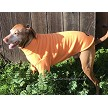 High visibility orange fleece dog sweater
