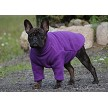 French Bulldog wearing the Purple Fleece Sweater from Euro Dog Designs