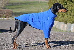 Soft and warm fleece sweater for your dog