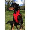 Cute cotton polo shirt for your dog in Red/Black